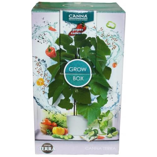Canna - Kit Canna Grow TERRA Box Peper Zaden