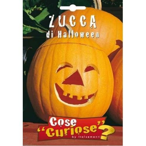 Zucca di Halloween f95ac281f656